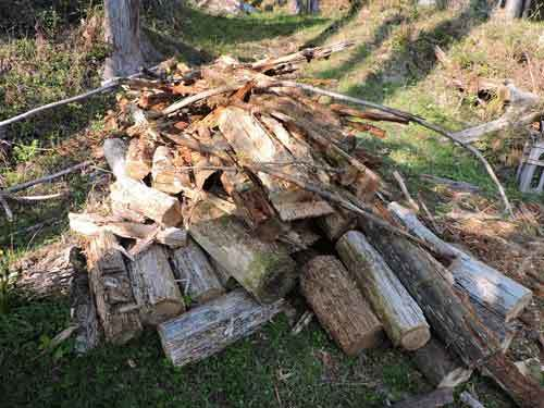 運び出している朽木