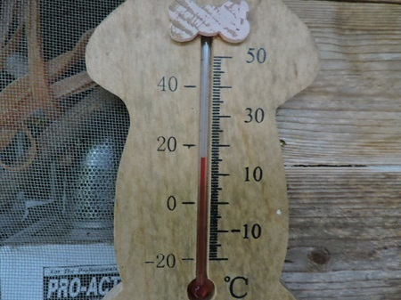 午前7時の気温