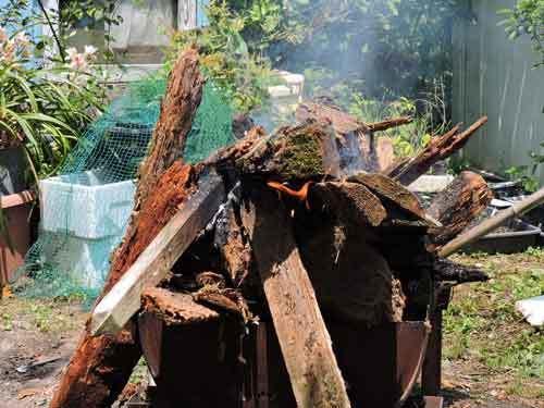 朽木を燃やす