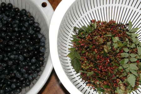 山椒の実とブルーベリー