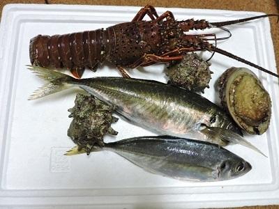 戴きものの海鮮類