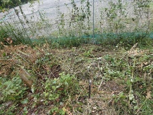 草木処理2