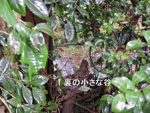台風10号2