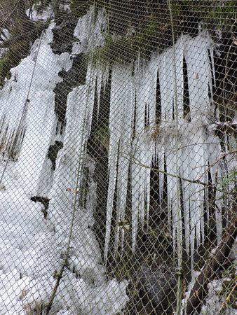 氷柱群(1)