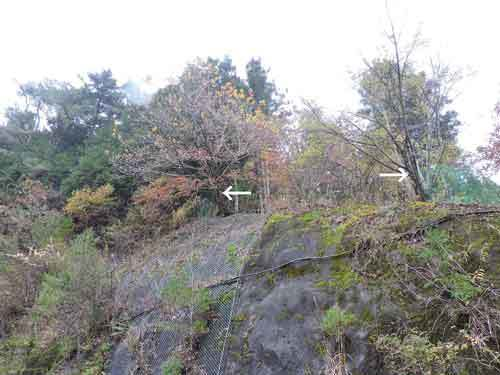 前面道路際の崖2
