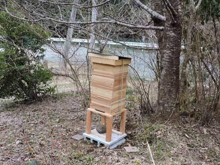巣箱設置2