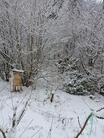 1月5日積雪2