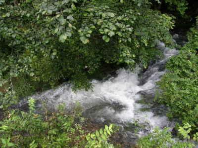 道路の向こうの小さな渓流