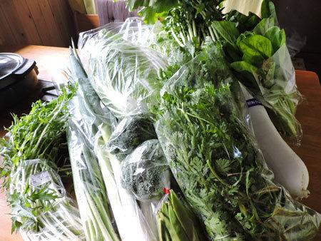 購入した野菜類