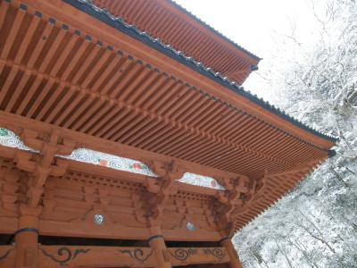 09-kouya01-03.jpg