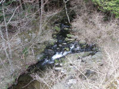 ログ前の小さな渓流