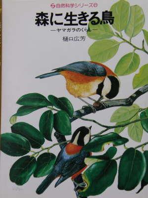 森に生きる鳥