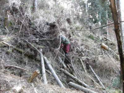 薪作り(2)