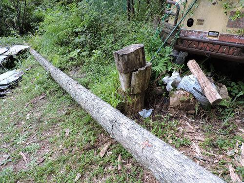伐採3本目1