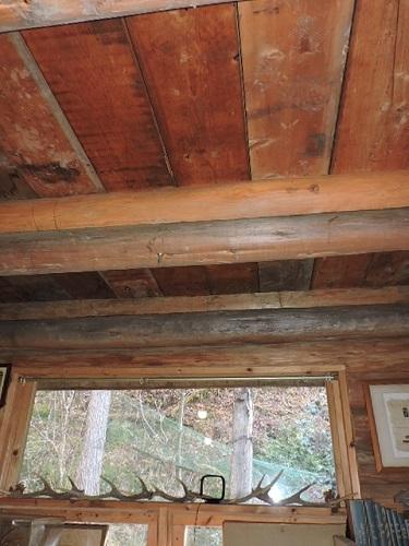 ログの天井