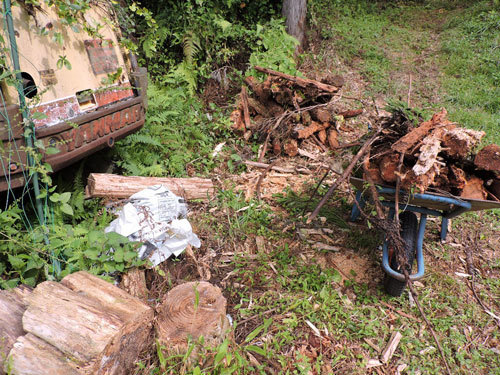 雑草と朽木の処理2