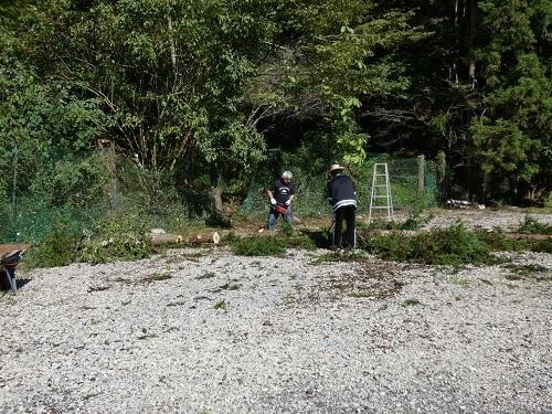 伐採作業3