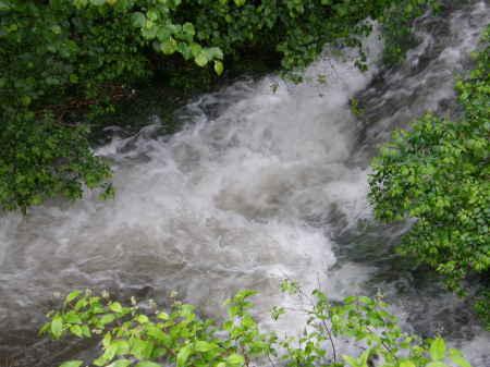 敷地向いの渓流